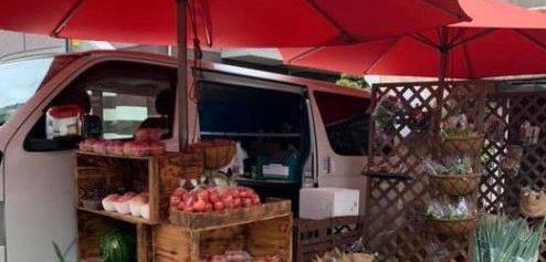 群馬県太田市から池袋へ新鮮な野菜を│OTA青果